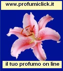 Vendiamo profumi, cosmetici, make up